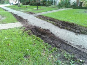 lawn destroyed